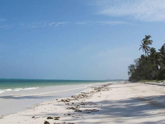 Krydderøya Zanzibar