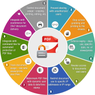 enterprise_pdf-drm-infographics-locklizard