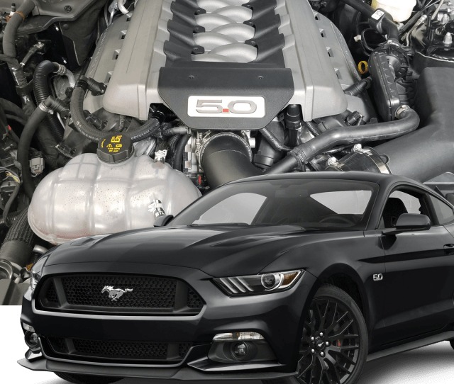 Hellion 2015 2019 Ford Mustang Gt Street Sleeper Twin Turbo System