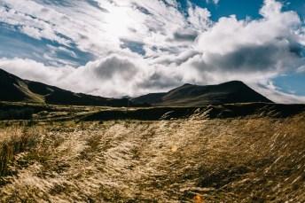 Landschaft in Island bei Sonnenschein