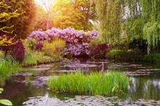 Die berühmte Brücke im Garten von Monet