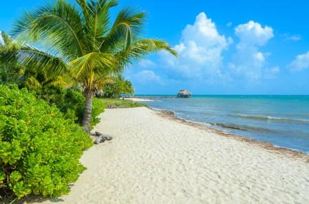 Tropischer Strand von Belize