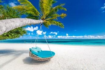 Strandkorb an einer Palme auf einem Traumstrand