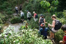 Wandernde in Vietnam
