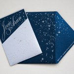 silver pressed invitation on deep navy shimmer custom lasercut monogram, printed hindu wedding program with elephants, laser cut table numbers | AZURE