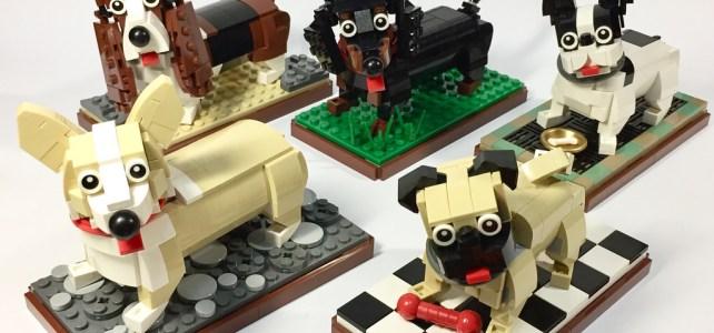 Bande de (mini) chiens