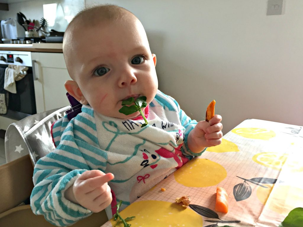 chicco high chairs uk plastic lounge chair baby led weaning essential products - hello deborah
