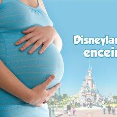 Disneyland Paris enceinte