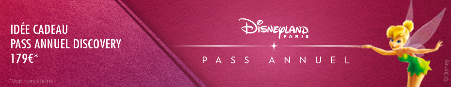 promotions pass annuels disney prix