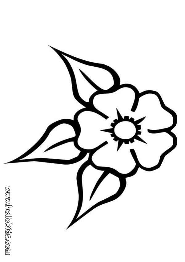 Coloring Pictures Of Flowers To Print