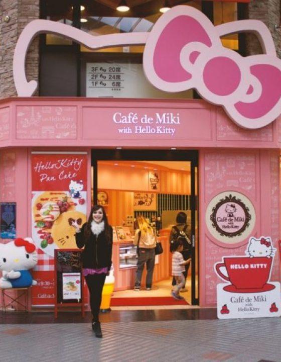 Whimsical Wandering: Himeji Castle & Hello Kitty Café