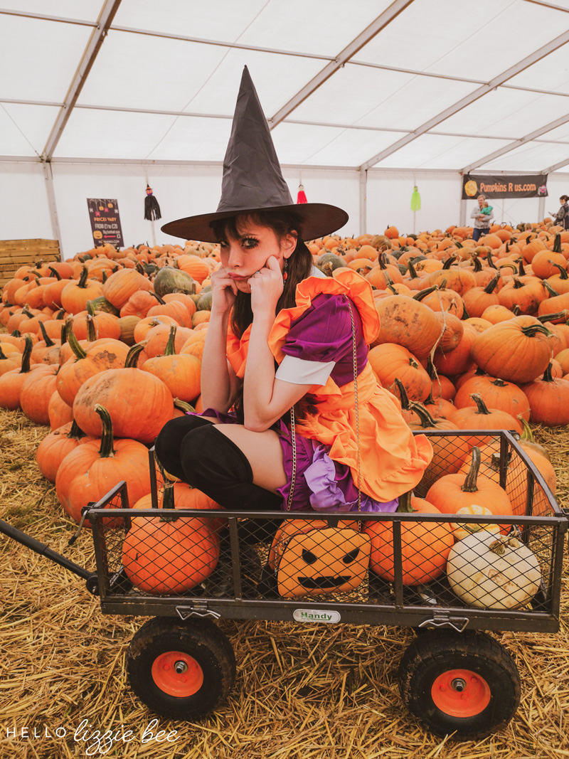 Pumpkin witch costume, Pumpkins R Us