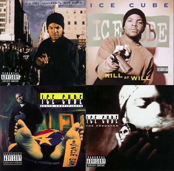 ice-cube-covers