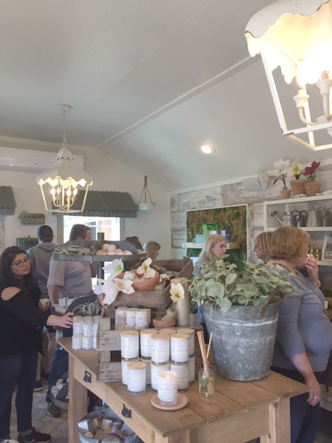magnolia market 22 best tips to know
