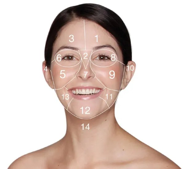 acne face diagram 1990 jeep wrangler ignition wiring mapping what do your spots mean each area reflects a different part of internal health so exactly pimples on certain areas hello takes you behind facial spot map