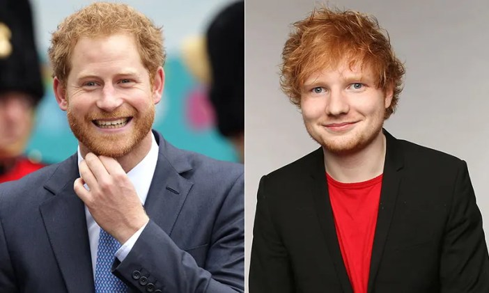 Image result for ed sheeran prince harry