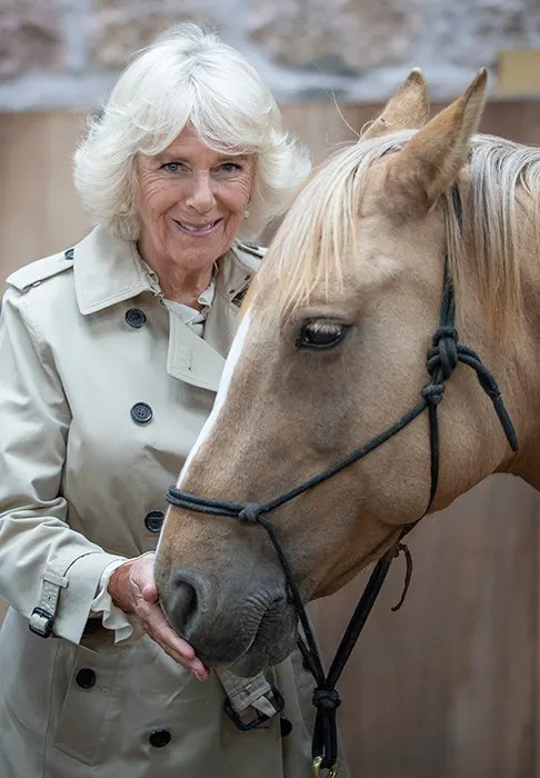 Camilla Parker-Bowles styled her favourite checked skirt ...
