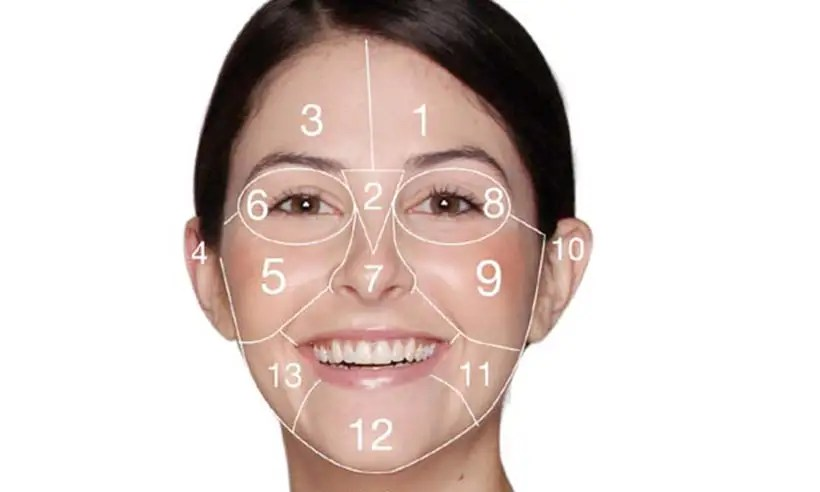 acne face diagram circle of 3 phase induction motor mapping what do your spots mean are telling you s causing them