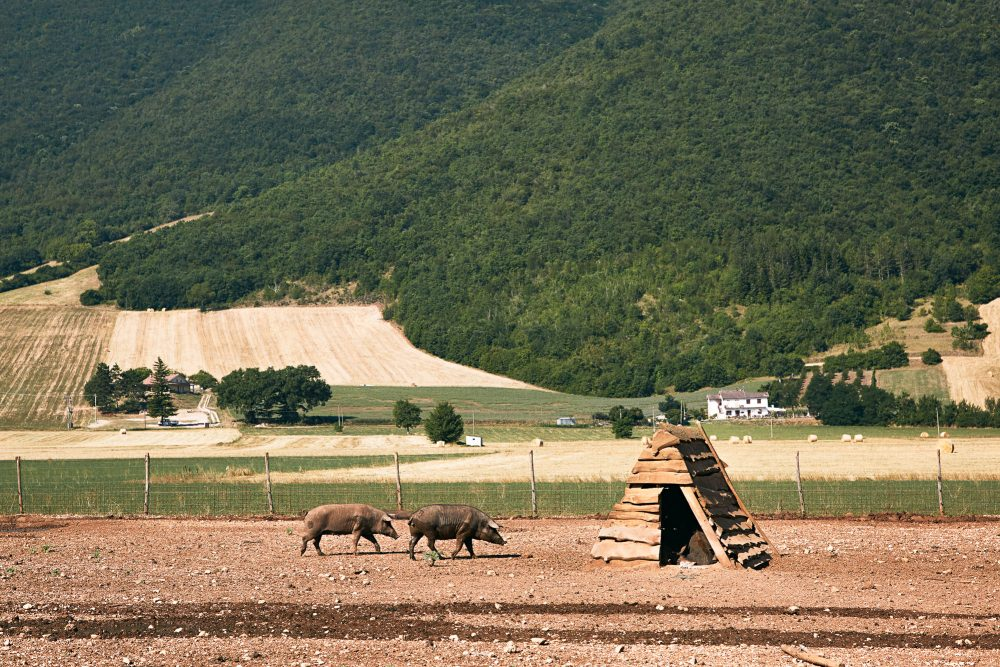 Norcia, Italy | Jenny Huang Photographer