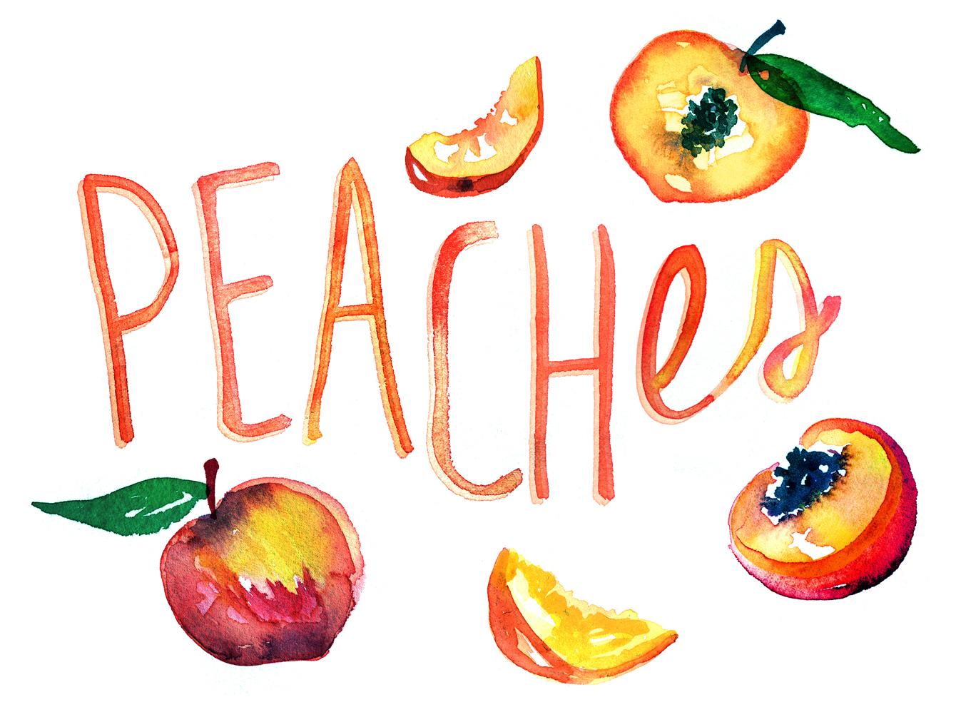 Food Network Fruit Illustrations  Hello Neighbor Designs