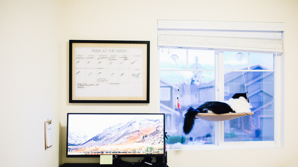 How to organize your office to be more productive!