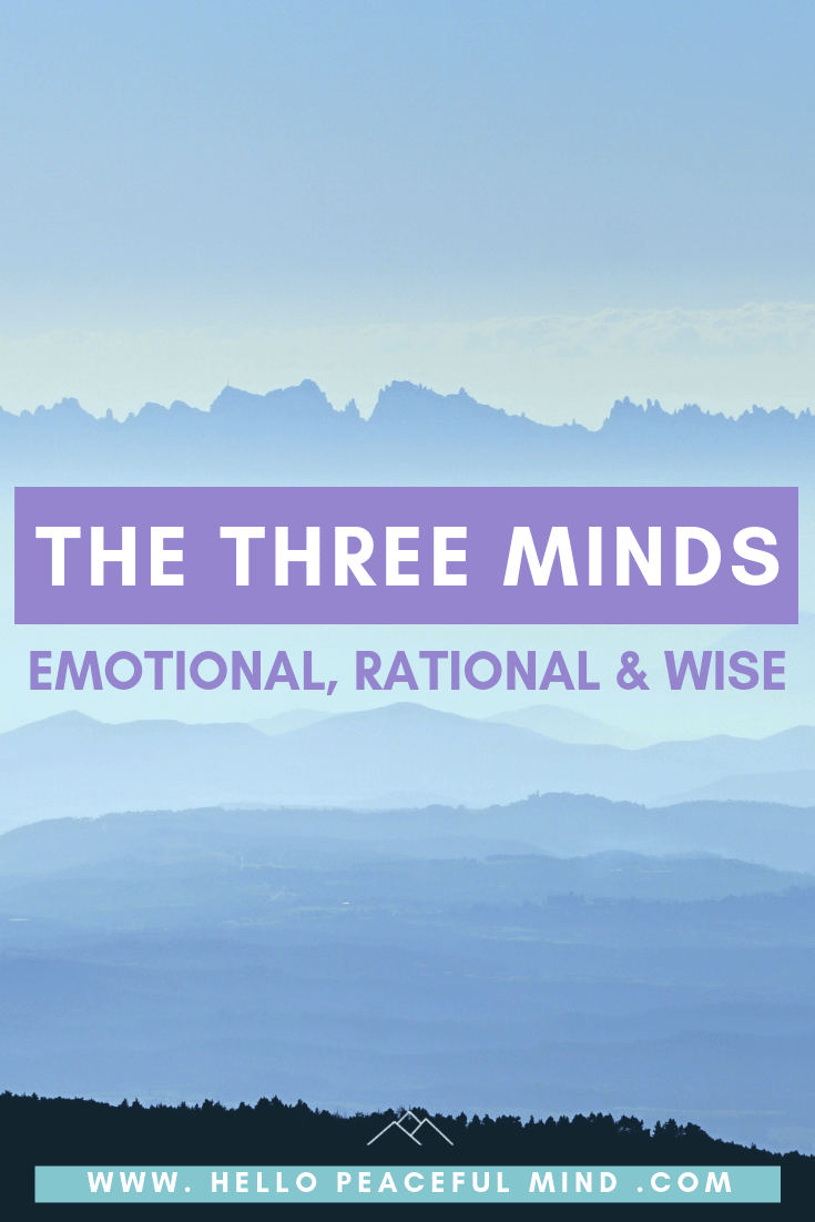 The 3 Minds