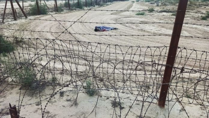 BSF on Indo pak border, Indo pak border, Indo pak border in Anupgarh, Intruder shot dead by BSF, Border Security Force,