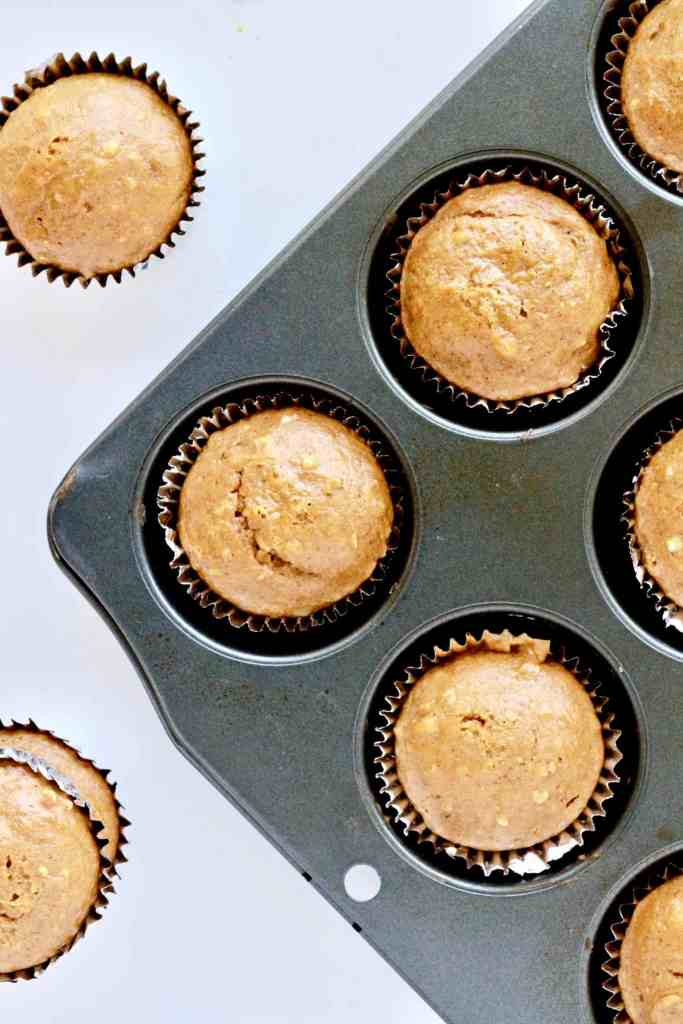 Pumpkin Apple Cinnamon Oat Muffins