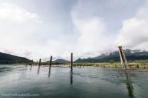 Harrison Hot Spring Bc Sport Fishing Group & Circle Farm Tour