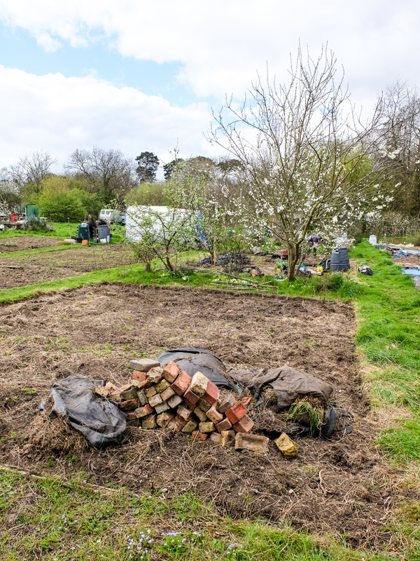 Before photos of the allotment | Hello Victoria