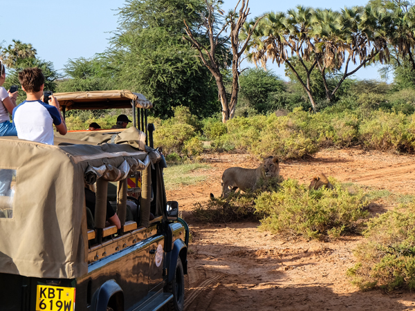Exploring Samburu National Reserve, Kenya | Hello Victoria