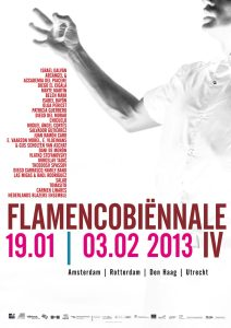 flamenco biënnale nl 2013 helma_timmermans_graphic_design