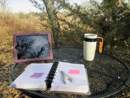 11-writing-outside-in-the-indian-summer