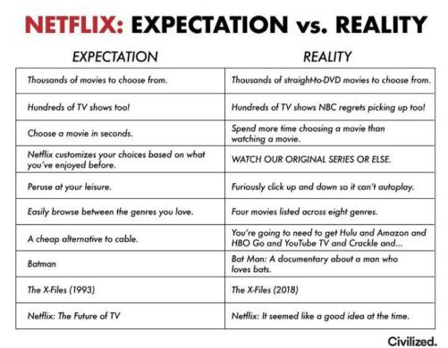 Netflix Expectation vs. Reality