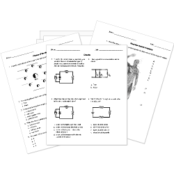 Natural Science Primary 1 Downloadable And Printable