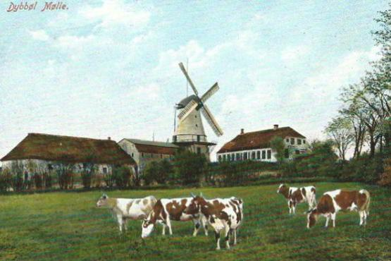 Dybbøl Banke and mill