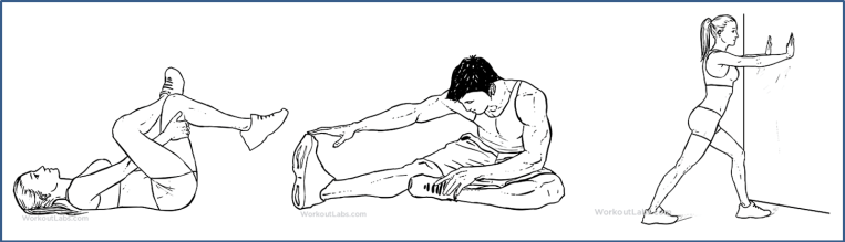 Lower back pain exercises - stretches