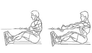 Lower back pain exercises - seated row
