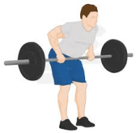 155 workout - bent over row