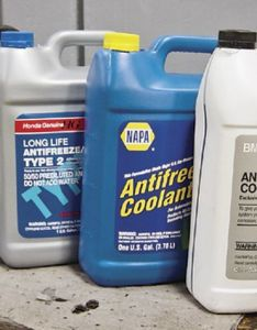 Antifreeze also tech  the colors of hemmings daily rh