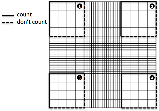 Hemocytometer: squares to count • Hemocytometer
