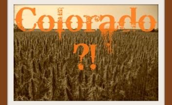 Colorado-Industrial hemp