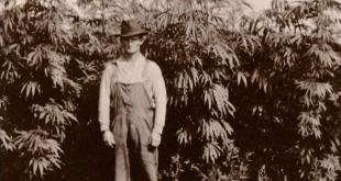 History of hemp - Hemp Facts