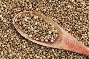 Hemp Seeds for health
