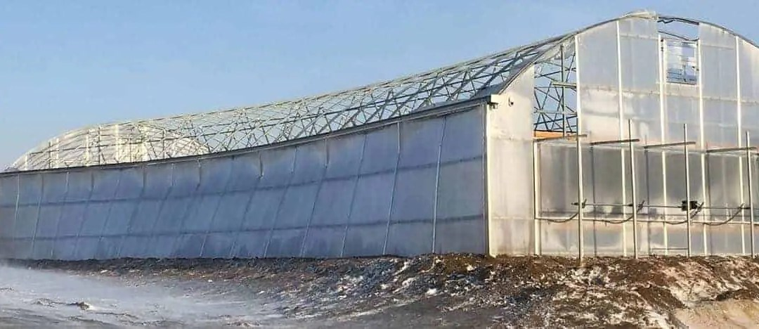 The Cheapest Steel Building Became a Very Expensive Mistake