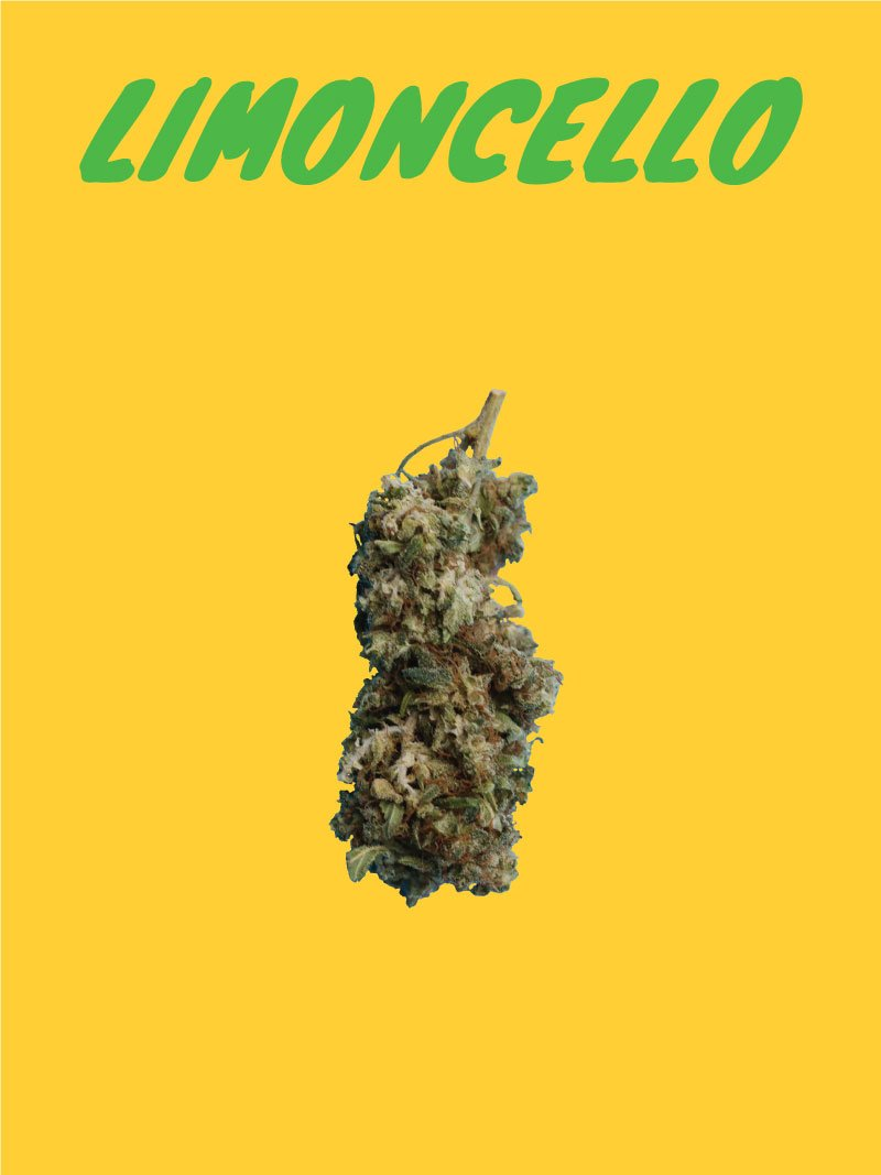 Limoncello CBD flowers