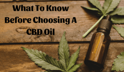 What to know before choosing a CBD oil
