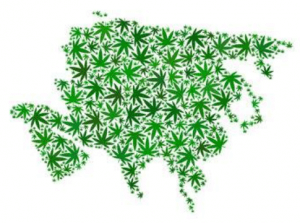 asia map of cbd marijuana cannabis