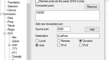 dynamicportputty