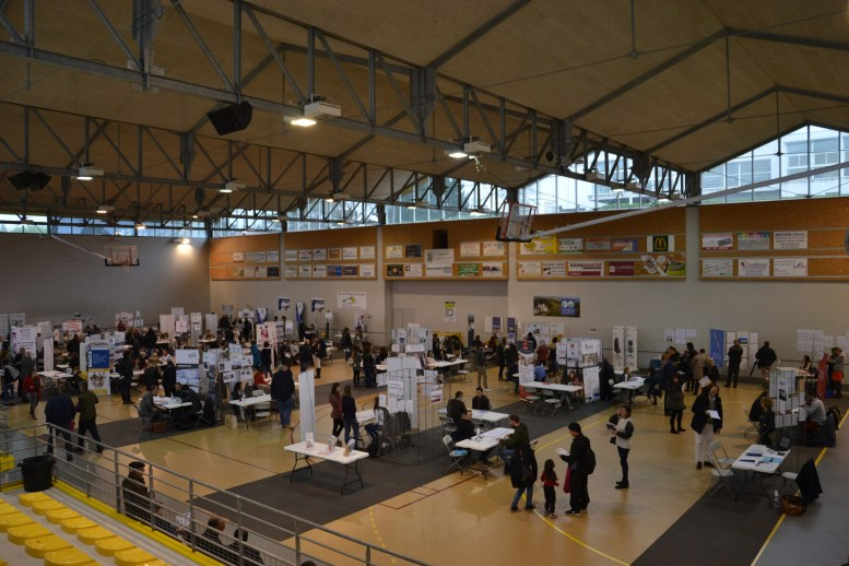 Photo-Gymnase-Irandatz-Forum-Emploi-2018-Article
